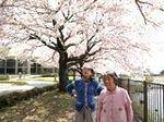 春が来た (3).JPG