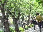 紫陽花散歩 (2).JPG