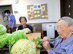 お野菜をたくさんいただきました (2).JPG