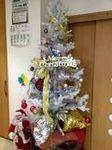 クリスマスの準備開開始! (2).JPG